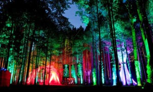 Electric_Forest_Festival